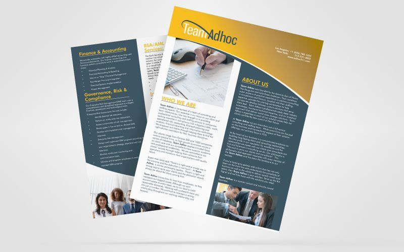 Team Adhoc Brochure Design