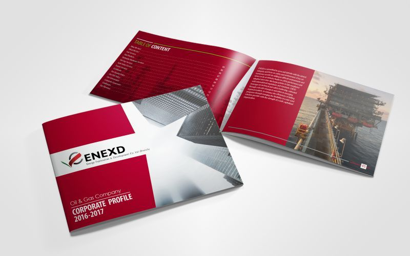 Enexd Energy Exploration Co. Company Profile Design