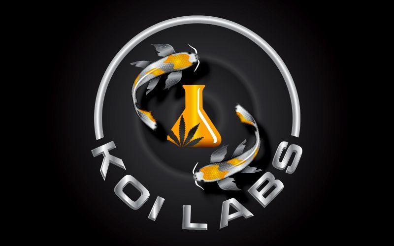 Koilabs 3D Logo Design